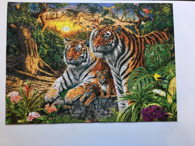 Hidden Images Glow in the Dark Jungle Pride : A Puzzle Review
