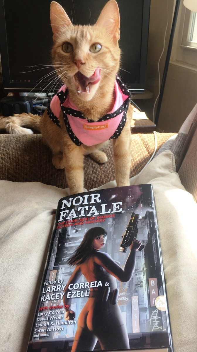 Dangerous Women Slay in Noir Fatale!